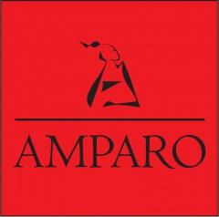 """""""Amparo"""" SIA, web dizains, 3D vizualizācijas"""